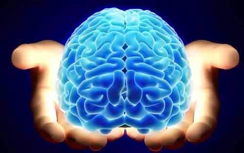 Επιστήμονες ανατρέπουν ότι χρησιμοποιούμε μόνο το 10% του εγκεφάλου