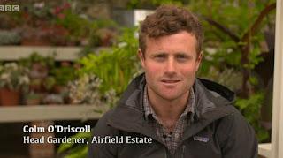 Colm O'Driscoll