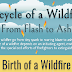 Lifecycle of a Wildfire: From Flash to Ash #infographic