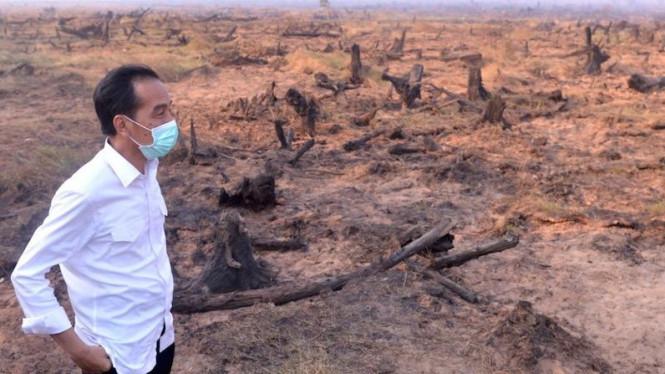 Celoteh Jokowi Tidak Ada Kebakaran Hutan Ternyata Nol Besar