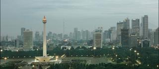 Jual Rumput Kebar Jakarta