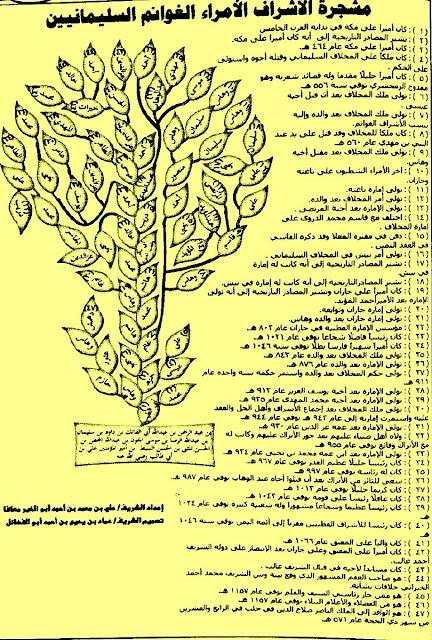 تاريخ السليمانيون