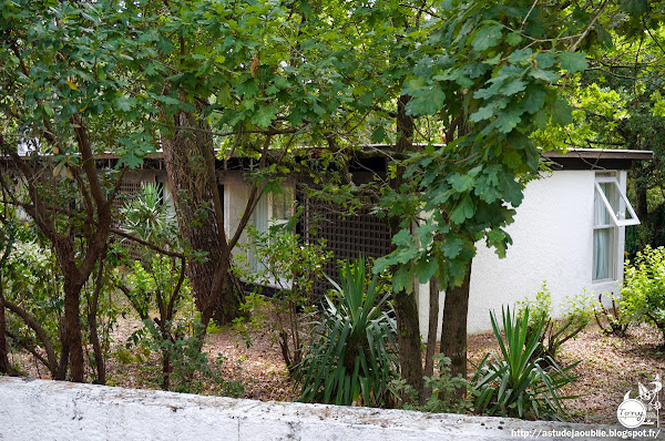 Cap-Ferret - Villa Cangardel, rue Merlot  Architectes: Adrien Courtois, Yves Salier, Michel Sadirac  Construction: 1963