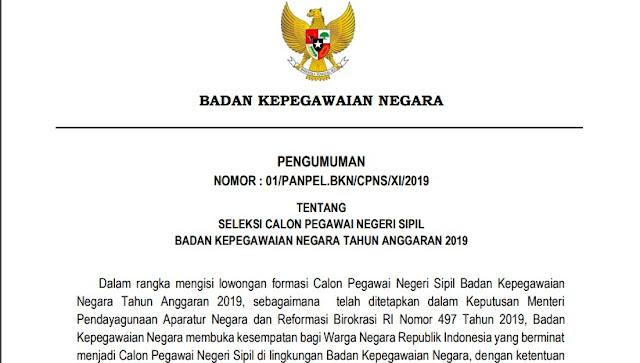 Formasi CPNS 2019