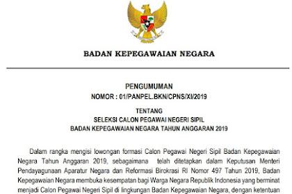 Pengumuman CPNS BKN 2019