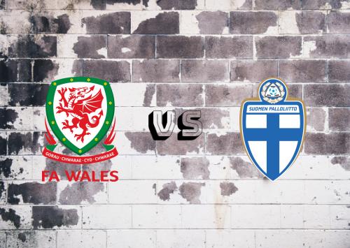 Gales vs Finlandia  Resumen