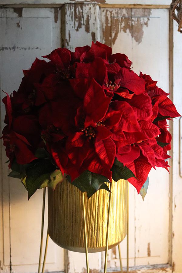 Gwiazda betlejemska, symbol Świąt Bożego Narodzenia
