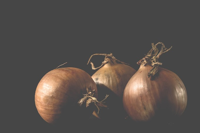 Can Dogs Eat Onion?