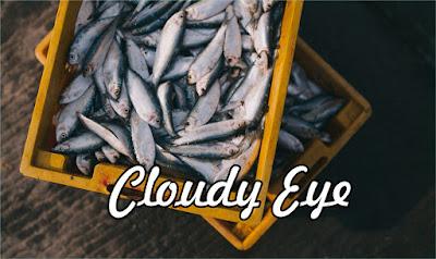 Cloudy Eye