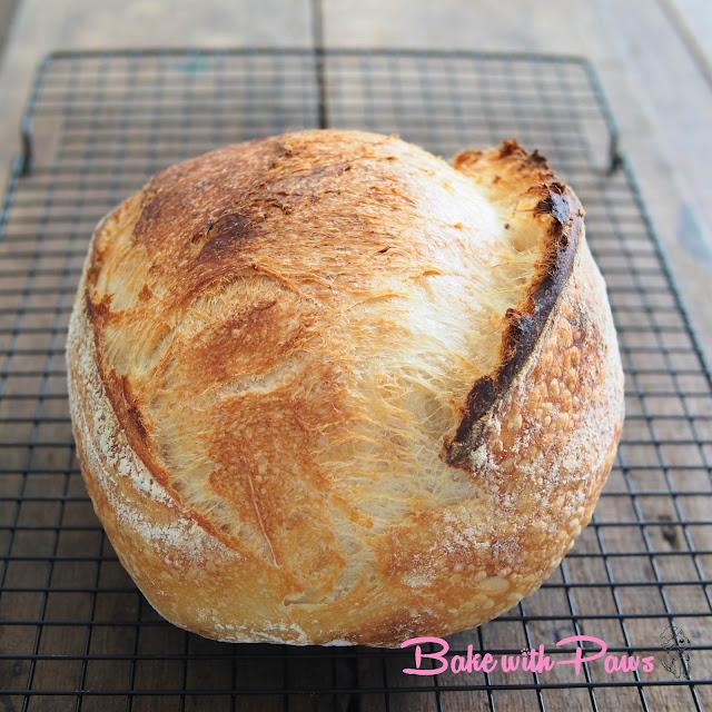 Semola Sourdough Open Crumb Sourdough Bread