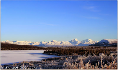 Pictures of the Frozen North, shared by Idlewild Alaska