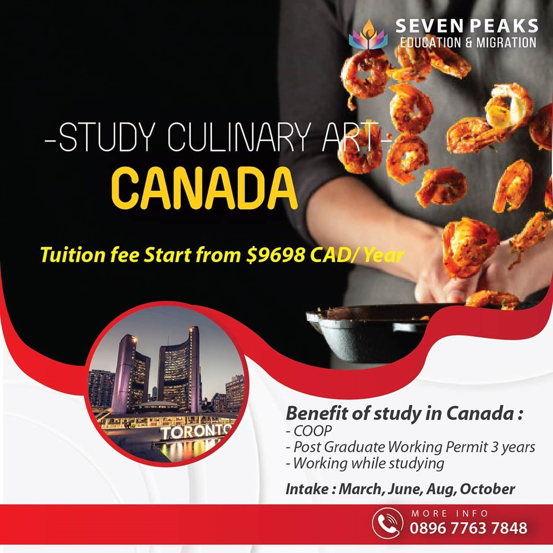 study culinary arts in canada study culinary arts in toronto canada  work and study culinary art in canada degree in culinary arts in canada