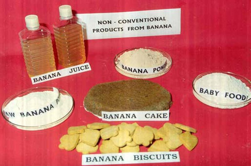 BARC Banana Products - 001