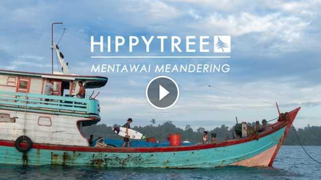 HippyTree Mentawai Meandering