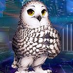 Games4King - G4K Lovely Owl Escape