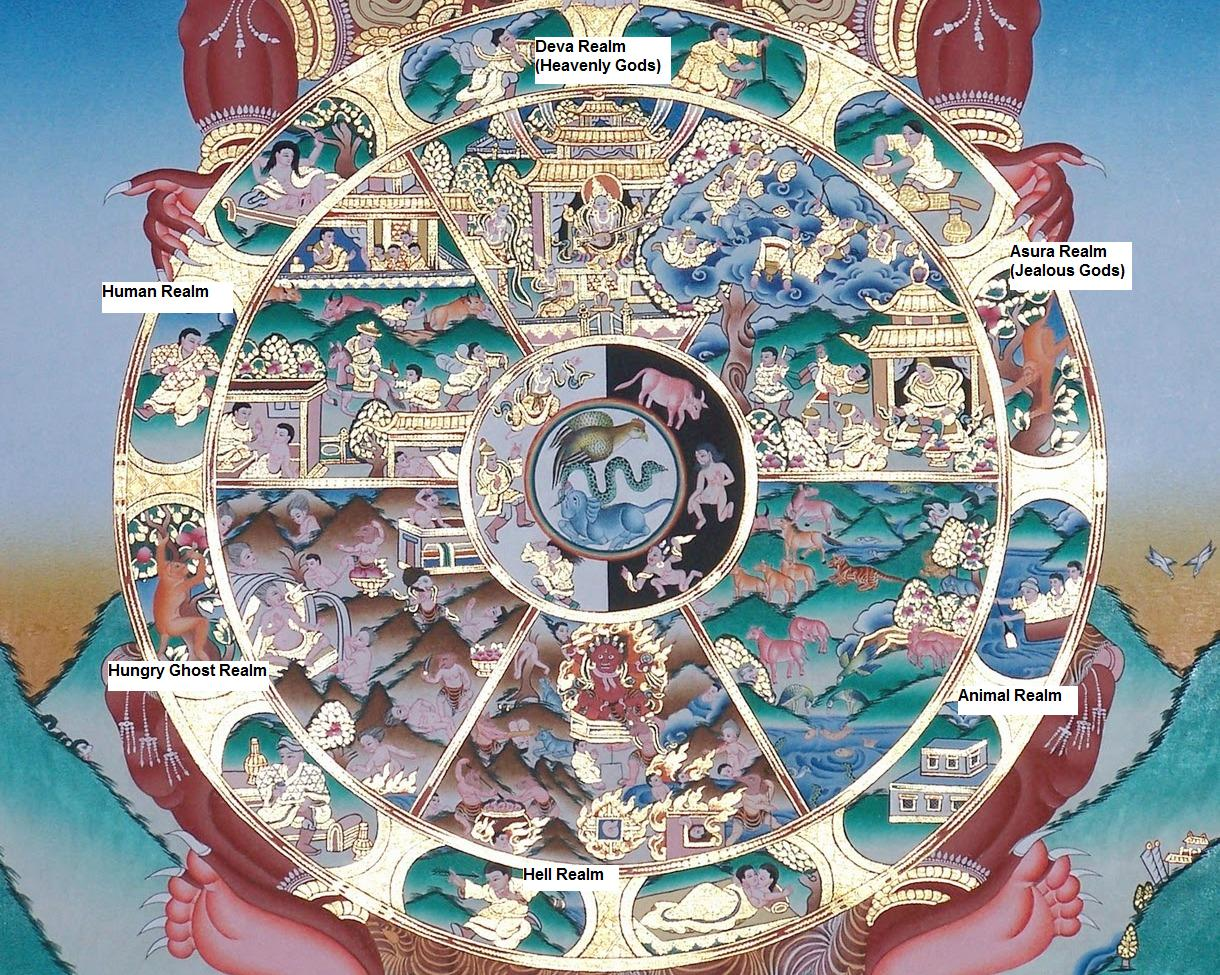 1000 images about wheel of life on pinterest for Buddhist wheel of life template