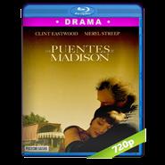 Los puentes de Madison (1995) BRRIp 720p Audio Dual