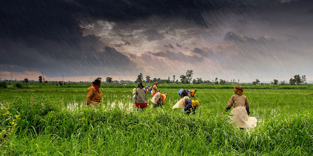 Image Attribute: Monsoon rains fall on the green valleys of Madhya Pradesh, India. Rajarshi Mitra / Source: Jackson School of Geosciences, The University of Texas at Austin / Creative Commons 2.0