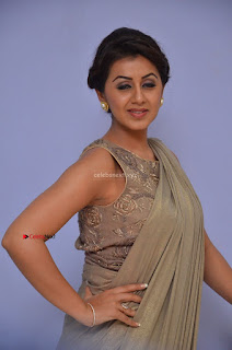 Nikki Galrani in Saree 100.JPG