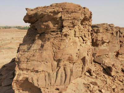 Σπάνια ανάγλυφα με καμήλες ηλικίας 2.000 ετών, βρέθηκαν στην καρδιά της ερήμου της Σαουδικής Αραβίας