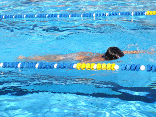 Image of a swimmer at a swimming carnival