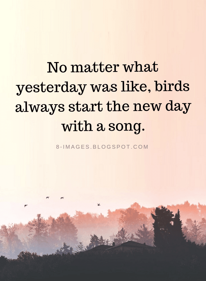 No Matter What Yesterday Was Like Birds Always Start The New Day