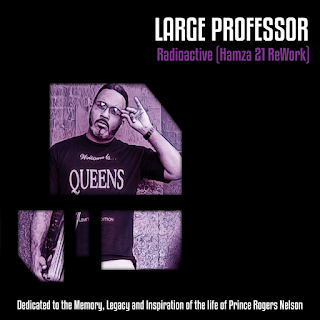 Large Professor - Radioactive (Hamza 21 ReWork)