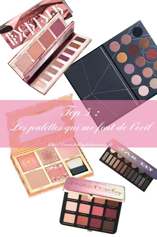 Les palettes maquillages qui me font de l'oeil Blog Nimoise Nimes 01