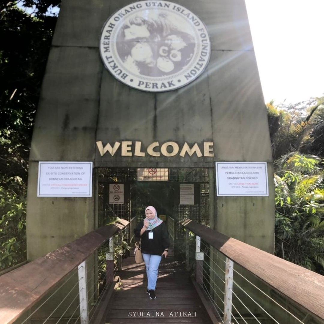 Melawat Pulau Orang Utan Bukit Merah Laketown Resort, Perak
