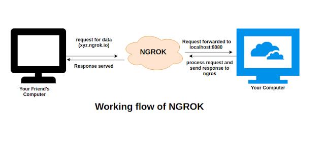 Ngrok workflow