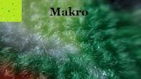 Makro nah: Mpow® 3 in 1 Clip-On 180 Grad Fisheye Supreme + 0.65X Weitwinkel + 10X Makro-Objektiv für iPhone 6/6 Plus iPhone 5 5S 4 4S Samsung HTC (Kein Dunkel Kreis durch die Fisheye-Objektiv)