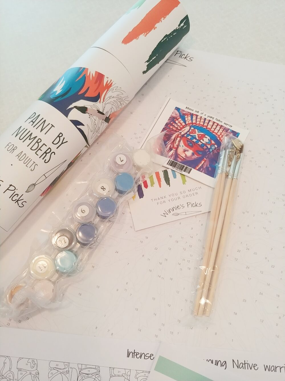 Paint by Numbers for Adults and a Coupon!