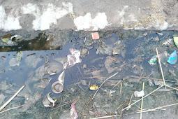 लखीमपुर खीरी - ब्लाक बेहजम के ग्राम पंचायत पैला में नहीं हो रही नालियों की सफाई