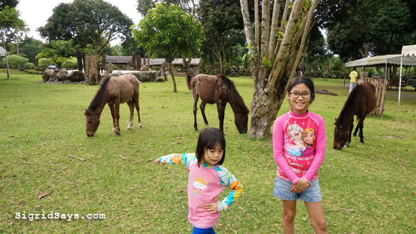 Bantug Lake Ranch - Bacolod attractions - horseback riding