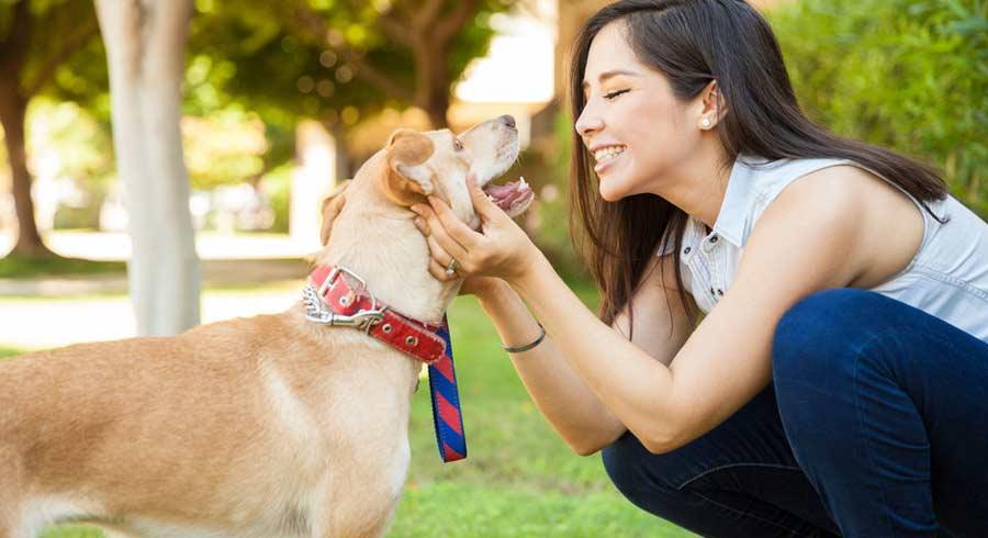 Las  personas que hablan con sus mascotas son más inteligentes que las que no lo  hacen