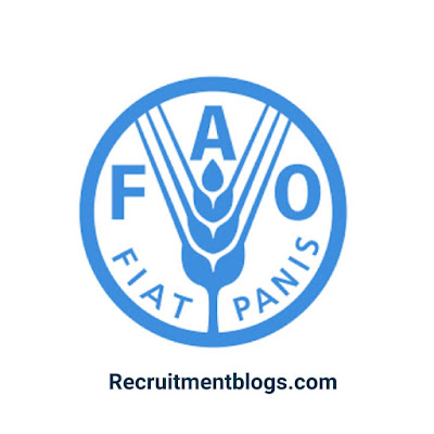 Food Safety And Quality Officer At The Food and Agriculture Organization Of the  United Nations  (FAO)
