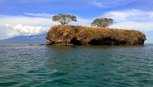 Legenda Pulau Ular : Pulau Keramat Yang dikutuk Oleh Sang Raja