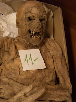 Mutated gene associated with colon cancer discovered in 18th-cent. Hungarian mummy