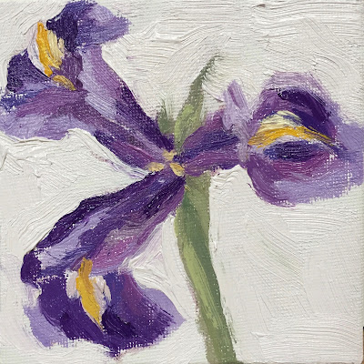 Daily Painting #24 'Open Iris Flower' 4×4″