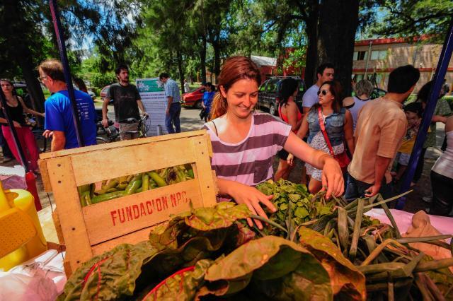 feria, agronomia, productor, consumidor, pic nic, musica, aire libre