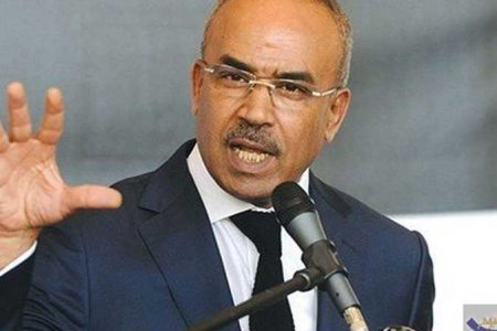 الجزائر حكومة نور الدين بدوي انتخابات الجزائر