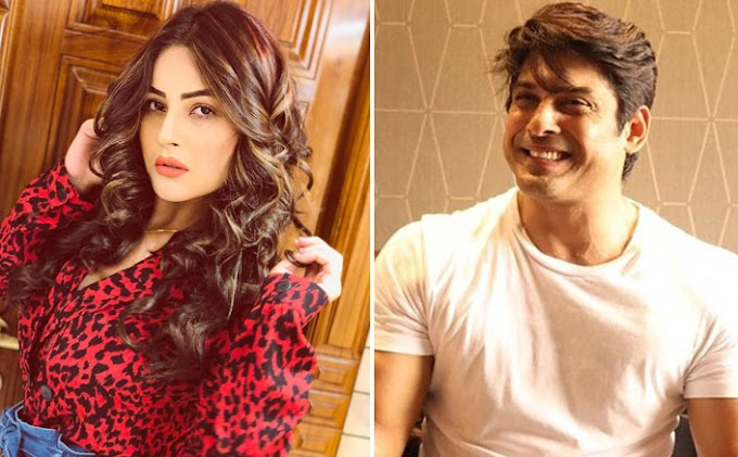 Bigg Boss 13: WHAT! Shehnaaz Gill Agrees To FAKING Love For Sidharth Shukla For The Game?