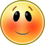 Blushing Smiley Emoticons