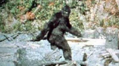Η κινηματογράφηση ενός Bigfoot (Μεγαλοπόδαρου) από τους Patterson και Gimlin – Η ιστορία ενός θρυλικού φιλμ (ΦΩΤΟ)