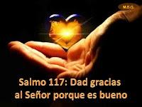 Resultado de imagen para Dad gracias al Señor porque es bueno, porque es eterna su misericordia. Mejor es refugiarse en el Señor