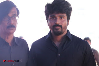 Tamil Film Industry Jallikattu Support Protest of Jallikattu  0063.jpg