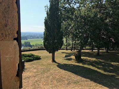 Le Chat retrouve avec plaisir son ami Vincent dans la maison de Labadie    longues discussions devant la vue sur les vignes a5fac3b9130