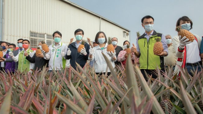 China and Taiwan fight over pineapples