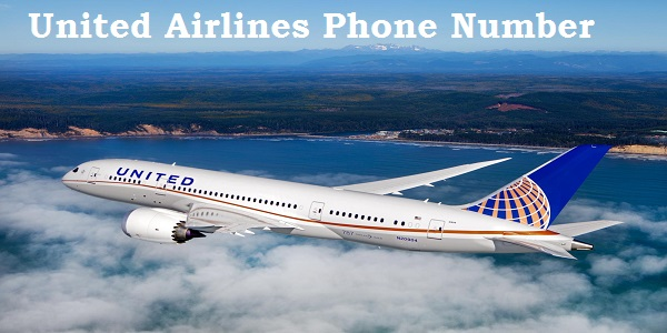 low cost airlines have revolutionized travel Low-cost airlines are becoming more prevalent, due to the need of traveling on a tight budget low-cost airlines are located all over the world and have changed the.