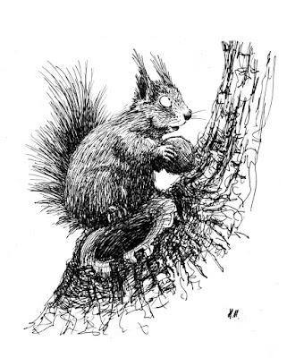 ecureuil encre ink squirrel